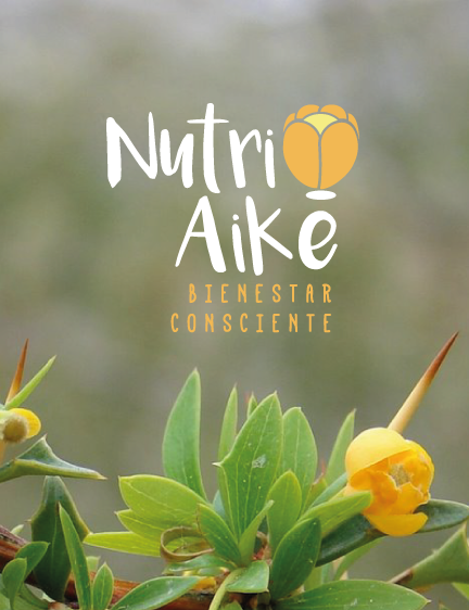 Nutri Aike | Nutrición Consciente